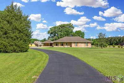 Denham Springs Single Family Home For Sale: 36491 Caraway Rd