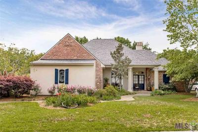 Baton Rouge Single Family Home For Sale: 8134 Cypress Lake Ave