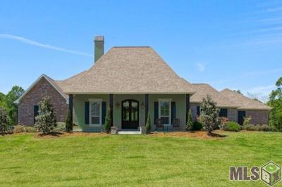 Walker Single Family Home For Sale: 34375 Quarter Horse Ln