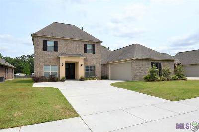 Prairieville Single Family Home For Sale: 18162 River Landing Dr