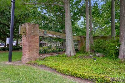 Baton Rouge Condo/Townhouse For Sale: 5533 Riverstone Dr