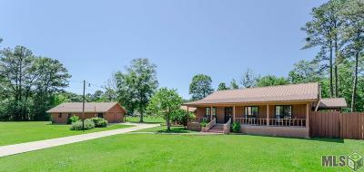 Walker Single Family Home For Sale: 12521 Ina Dr