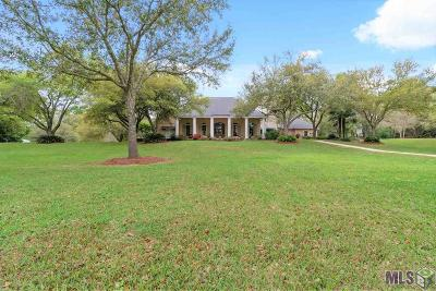 Prairieville Single Family Home For Sale: 17506 Summerfield South Rd