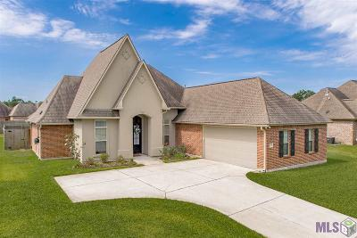 Livingston Parish Single Family Home For Sale: 10574 Creek Hollow Ct