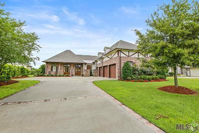 Baton Rouge Single Family Home For Sale: 15020 Audubon Lakes Blvd