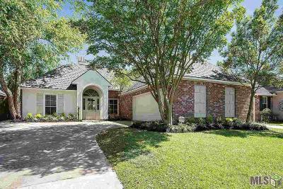 Baton Rouge Single Family Home For Sale: 10304 Springpark Ave