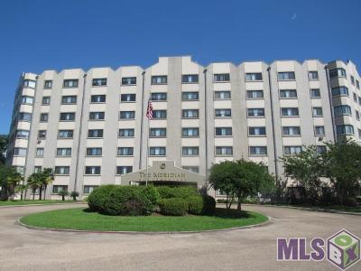 Baton Rouge Condo/Townhouse For Auction: 11550 Southfork Ave #717