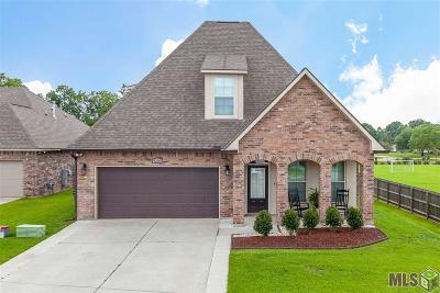 Oak Ridge Estates Single Family Home For Sale: 9208 Falling Oak Dr