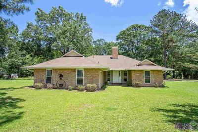 Baton Rouge Single Family Home For Sale: 9611 Shadows End Ave