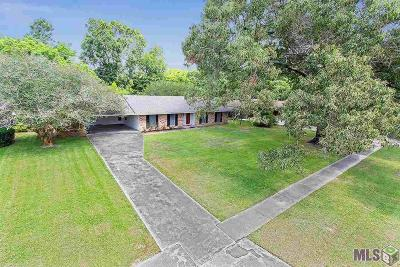 Westminster Place Single Family Home For Sale: 4074 Drusilla Dr