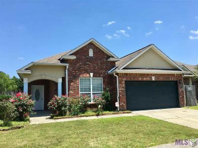 Springbrook Single Family Home For Sale: 13847 Briarcliff Ave