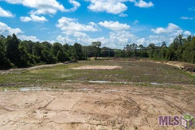 Central Residential Lots & Land For Sale: 16272 Hooper Rd #C-1-A-3