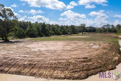 Central Residential Lots & Land For Sale: 16272 Hooper Rd #C-1-A-2