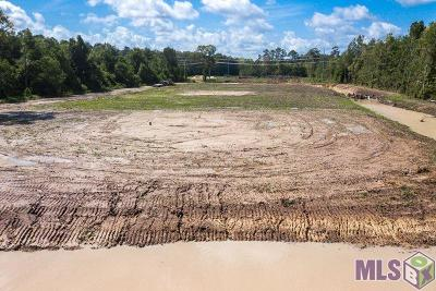 Central Residential Lots & Land For Sale: 16272 Hooper Rd #C-1-A-1