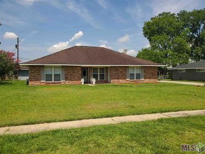 Baton Rouge Single Family Home For Sale: 3699 Oak Forest Ave