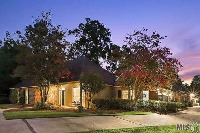 Baton Rouge Single Family Home For Sale: 1165 Cyril Ave