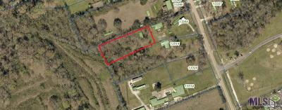 Baton Rouge Residential Lots & Land For Sale: Tbd Lovett Rd