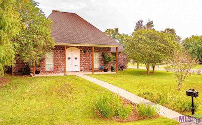 Baton Rouge Single Family Home For Sale: 3808 Twelve Oaks Ave