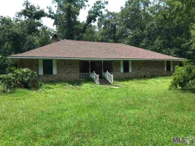 Prairieville Single Family Home For Sale: 15073 Bluff Rd