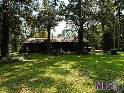 Walker Single Family Home For Sale: 10550 Florida Blvd