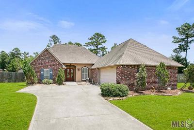 Denham Springs Single Family Home For Sale: 10191 Chanel Dr
