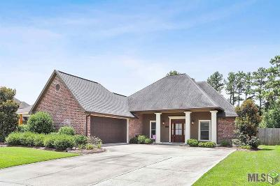 Central Single Family Home For Sale: 14540 Wisteria Lakes Dr
