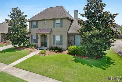 Prairieville Single Family Home For Sale: 16496 Oakview Dr