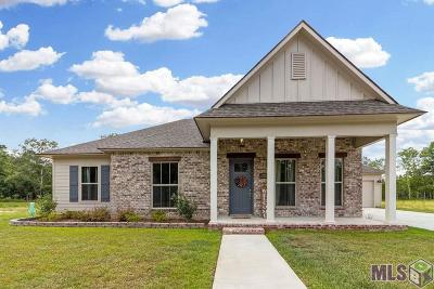 Denham Springs Single Family Home For Sale: 9823 Cane Mill Rd
