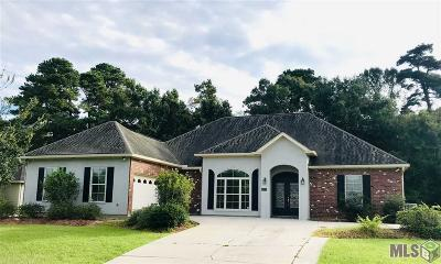 Single Family Home For Sale: 18122 Kenner Dr