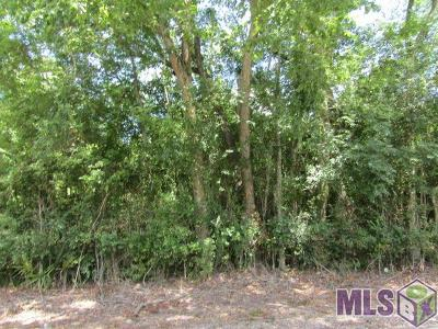 Residential Lots & Land For Sale: 12160 Roddy Rd