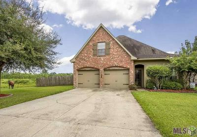 Geismar Single Family Home For Sale: 12128 Central Park Dr
