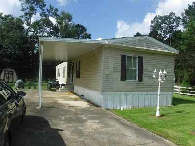 Livingston Parish Single Family Home For Sale: 13865 Brittany Ct