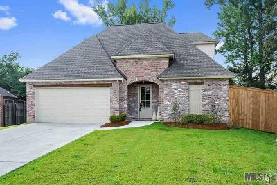 Walker Single Family Home For Sale: 30487 Trace Ln