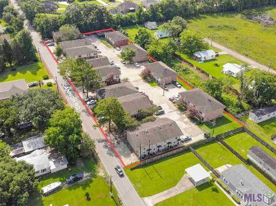 Ascension Parish Multi Family Home For Sale: 41063 Cannon Rd