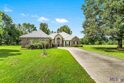 Walker Single Family Home For Sale: 13750 Friendship Rd