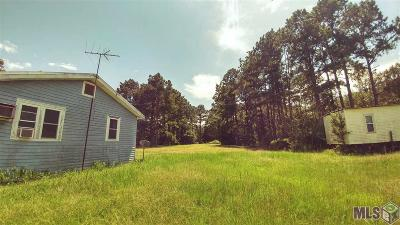 Maurepas Single Family Home For Sale: 13044 Hanna Rd