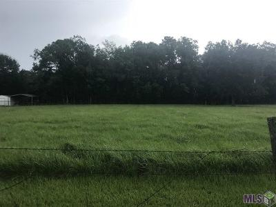Ascension Parish Residential Lots & Land For Sale: Lot Jh-3-A Anna Rd