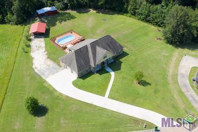 Livingston Parish Single Family Home For Sale: 29880 Marsh Dr