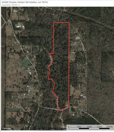 Livingston Parish Residential Lots & Land For Sale: 22408 Charles Holden Rd