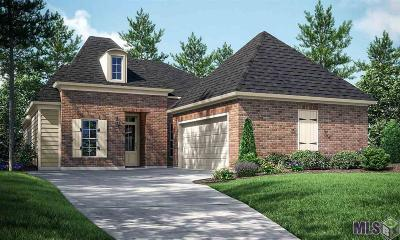 Single Family Home For Sale: 513 Longspur Ln
