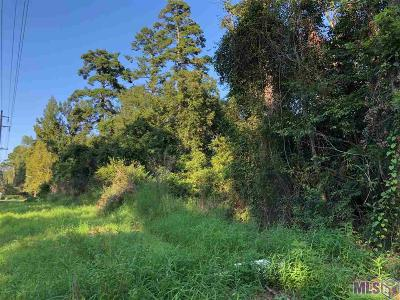 Livingston Parish Residential Lots & Land For Sale: Lot 1 La Hwy 16