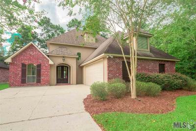 Livingston Parish Single Family Home For Sale: 12581 S Lakeshore Rd