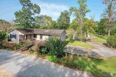 Baton Rouge Single Family Home For Sale: 9622 S Tiger Bend Rd