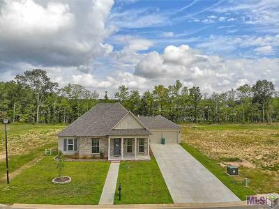 Livingston Parish Single Family Home For Sale: 9823 Cane Mill Rd
