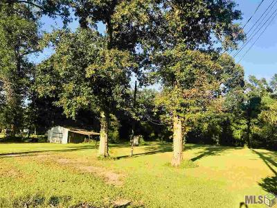 Rural Tract (No Subd) Residential Lots & Land For Sale: 18228 Bill Morgan Rd
