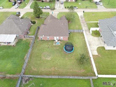 Prairieville Single Family Home For Sale: 43493 N Great Oak Ct