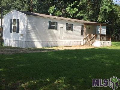 Walker Single Family Home For Sale: 30140 Smith Dr
