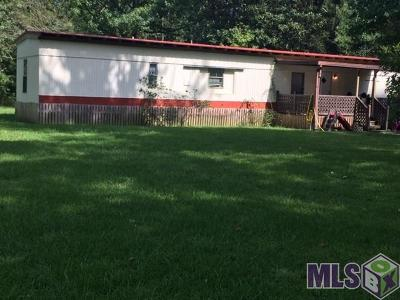 Walker Single Family Home For Sale: 30136 Smith Dr