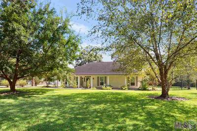 Walker Single Family Home For Sale: 13120 Whit Holden