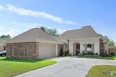 Prairieville, Baton Rouge, Geismar, Gonzales Single Family Home For Sale: 1907 S Robert Ave